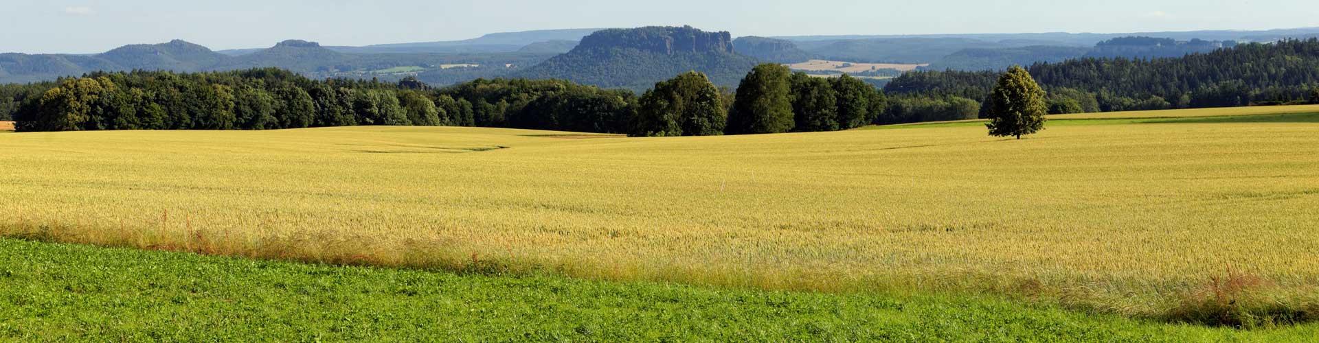 Kinder- und Jugendförderverein für Rathewalde, Zeschnig und Hohburkersdorf
