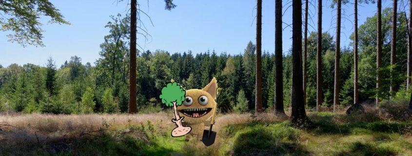 Frühjahrswanderung mit Baumpflanzung