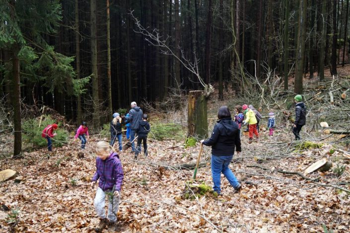Bäume pflanzen im Nationalpark